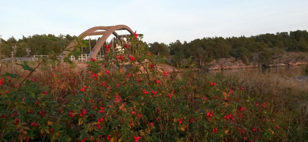 Bomarsundsbron
